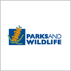 Parks & Wildlife supporting Jetty to Jetty Coogee Ocean Swim